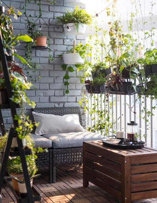 Aménager une petite terrasse avec des plantes