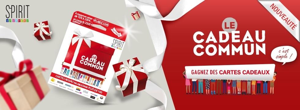 Carte Cadeau Fnac Spirit Of Cadeau.Midipile La Carte Cadeau Commun Spirit Of Cadeau Ccds