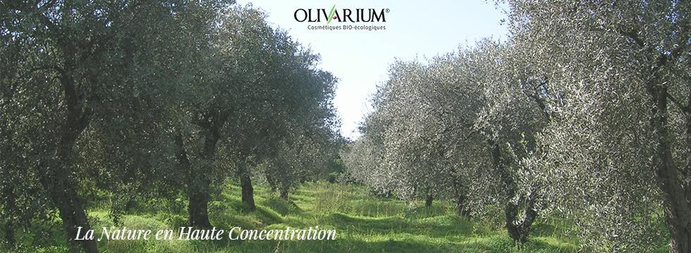 Olivarium : La Nature en Haute Concentration !