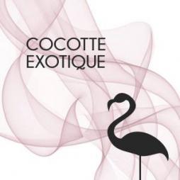 OFFRE 48H : Les jolis headbands de Cocotte Exotique, l'accessoire classe et coloré de votre garde-robe