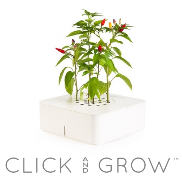 Découvrez Click And Grow, le Pot Electronique Intelligent