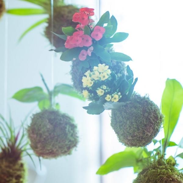 Découvrez Ikebanart : les créations d'art floral !