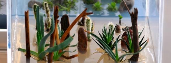 L'univers Greenfeel, l'unicité du design végétal