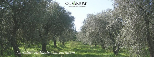 Olivarium : La Nature en Haute Concentration !